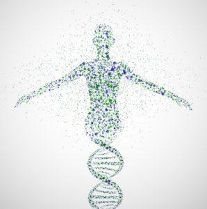 DNA The Lives of My Ancestors Stephen Robert Kuta